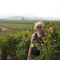 Orna Chillag in Kerem Ben Zimra vinyard