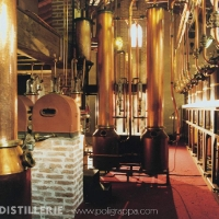 Poli_Distillerie_Alambic_2000